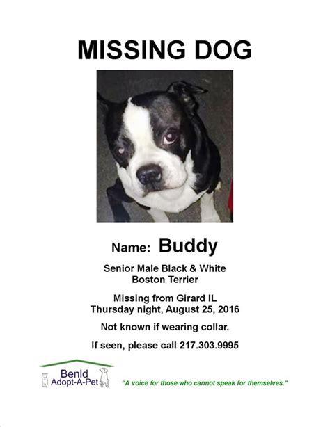 missing dogs lost found pets benldadoptapet