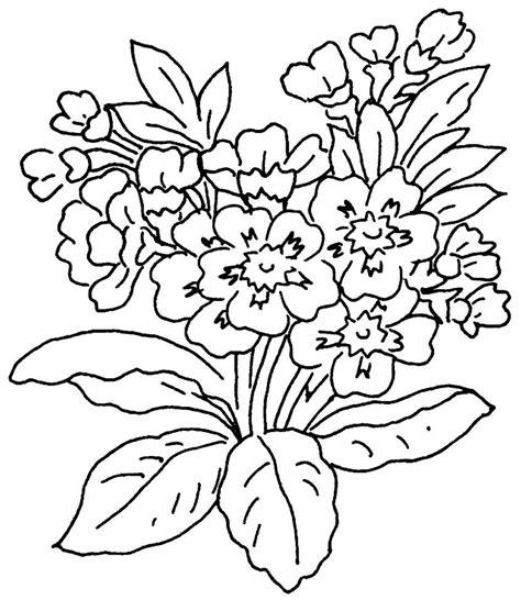 5 di fiori disegni da colorare gratuiti disegni di fiori fiori da
