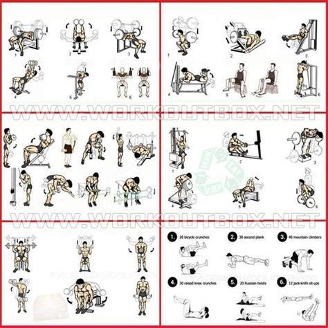 workout regimen to build mass anotherhackedlife