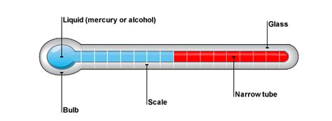 clinical thermometer labeled diagram temperature measurement part 1 kullabs