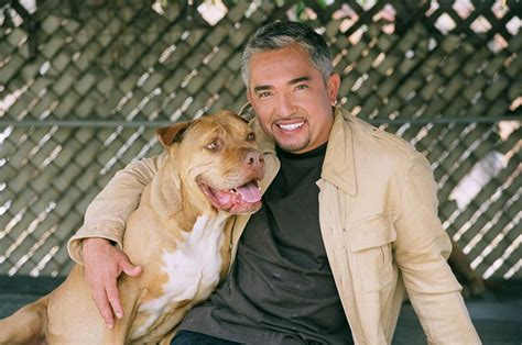 cesar millan s jahira dar helps cesar overcome attempt and divorce with ilusi 243 n