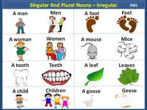 singular and plural nouns irregular english pinterest