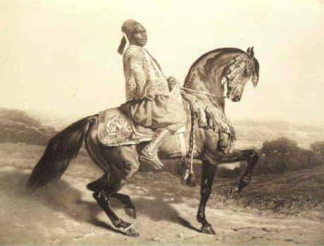 farewell to the horses arab s farewell