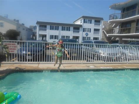 beach house dewey another thing found on the beach picture of beach house dewey dewey beach tripadvisor