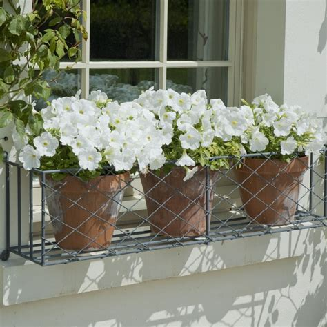Planter Box Flowers by 25 Best Ideas About Window Box Flowers On
