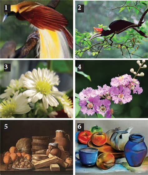 teknik menggambar flora fauna dan alam benda