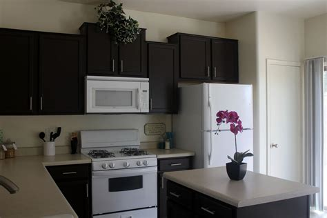 paint kitchen cabinets cost painting kitchen cabinets cost