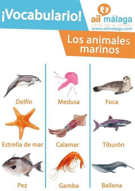 spanish to gcse mucha 0199122210 mejores 390 im 225 genes de bichos en animales lindos los animales m 225 s lindos y