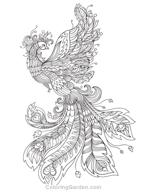 free printable phoenix adult coloring page download it in