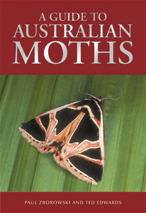 the of the moths books a guide to australian moths paul zborowski ted edwards