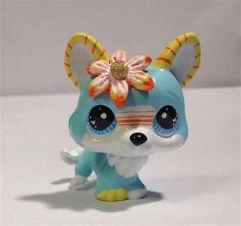 puppy shop miami 299 best littlest pet shop pics images on custom lps toys and littlest