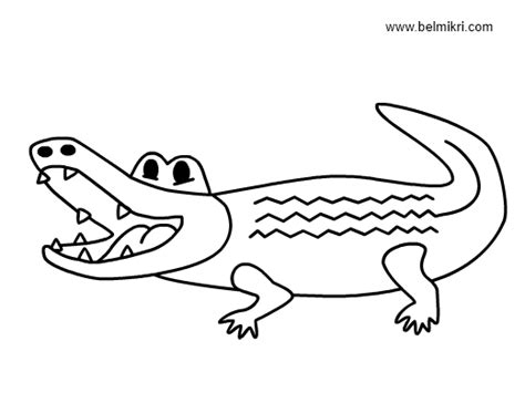 template of crocodile bow with alligator coloring printable coloring pages