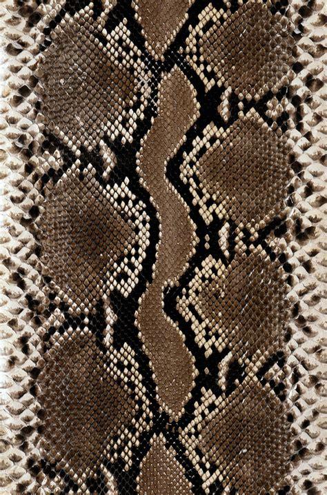 pin texture snake pictures reptiles skin pattern animals wallpaper on snake skin pinteres