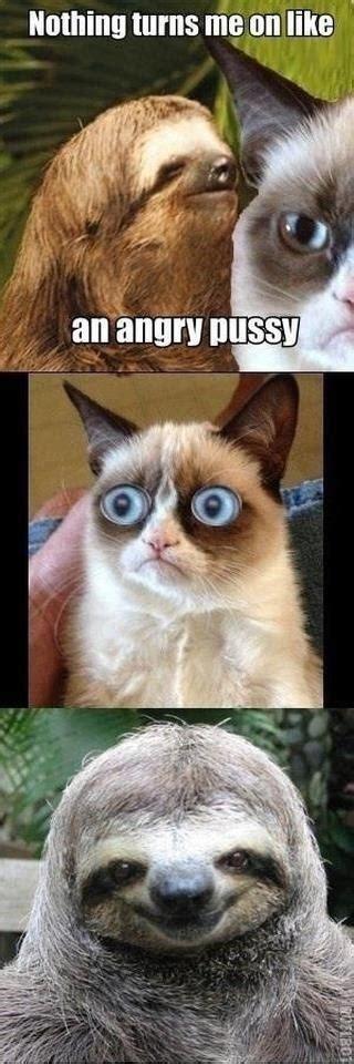 Rape Sloth Meme Generator - 58 best rape sloth images on pinterest
