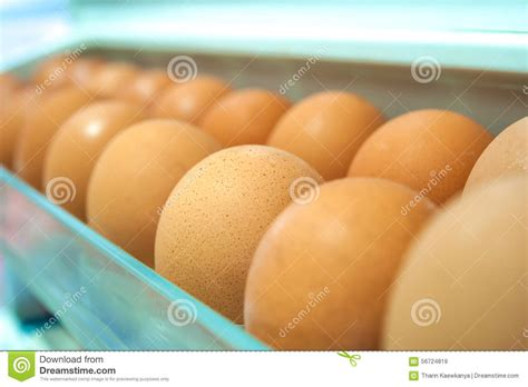 Shelf Of Refrigerated Eggs by Eggs On A White Shelf Stock Photo Image 56724819