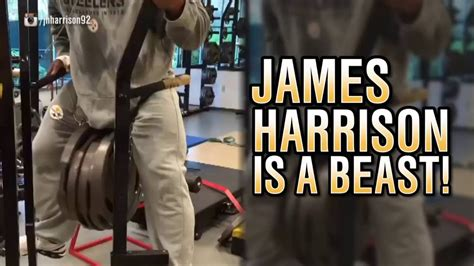 james harrison bench press max watch james harrison do tricep dips with almost 300 pounds