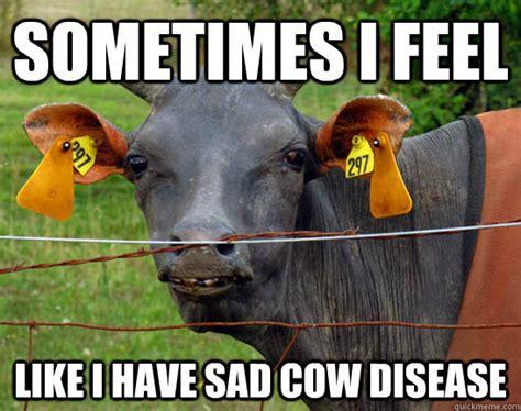 Cow Meme - minecraft cow
