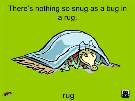 as a bug in a rug a house is a house