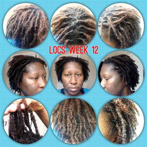 pics of locs growth stages 13 best loc growth images on pinterest natural hair