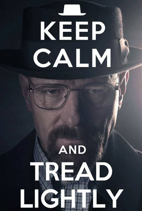 Breaking Bad Tread Lightly by Keep Calm And Carry On Poster Print 16 X 20 In Chocolate Brown Half O