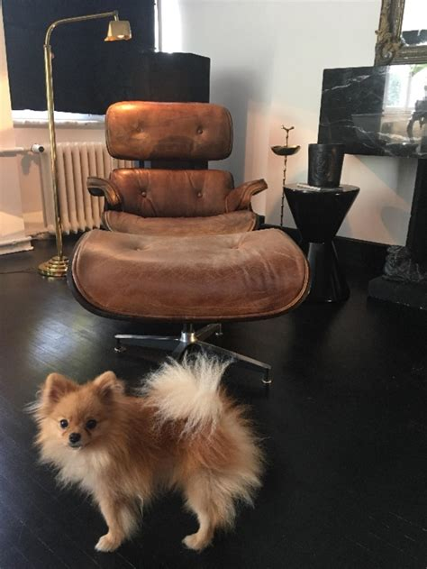 kahverengi eames style dana derisi lounge chair kullanilmis berjer satici efe