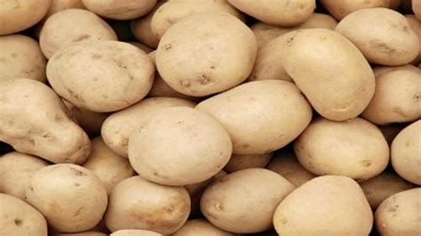 loses 70 pounds in 100 days on potato only diet