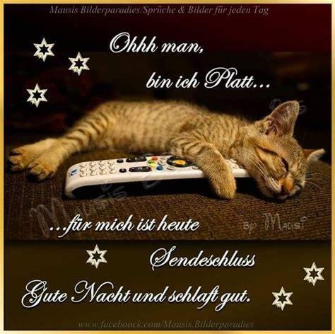 Gute Nacht Katzen Bilder by 1957 Besten S 252 223 E Tr 228 Ume Gute Nacht Bilder Auf