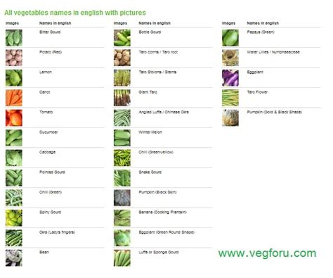 vegetables with english names vegetables name in english with picture vegforu