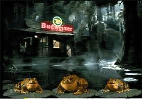 good freeware blog budweiser frog screensaver
