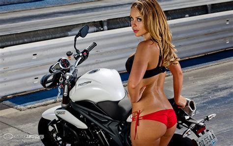 Triumph Motorrad Usa by Triumph Motorcycle The Speed Triple Of Usa Wallpaper