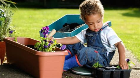 gardening  kids cbeebies bbc