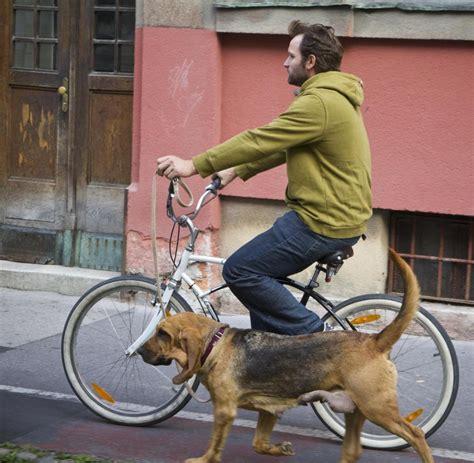 len 70er berlin verkehrspolitik auf eigener spur radfahrer 252 berrollen