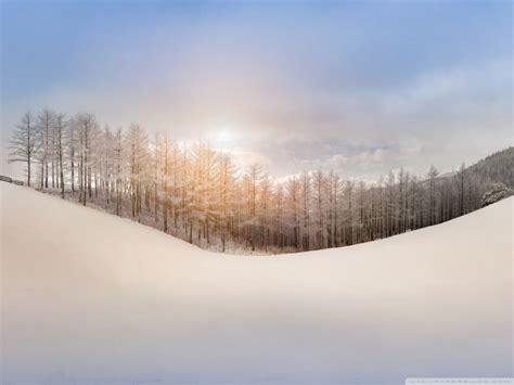 winter snow hills sunlight trees ultra hd desktop