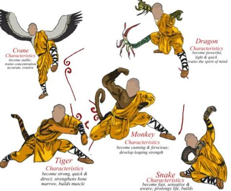kung fu animal power fu book books shaolin kung fu techniques and in china learn