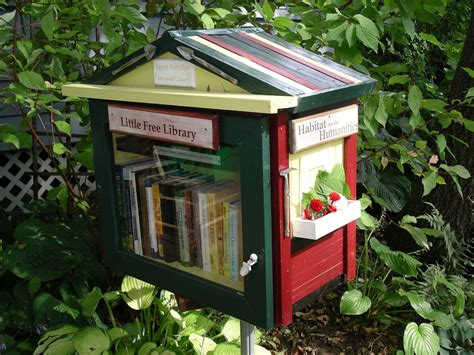 tiny library it s a birdhouse it s a treehouse for borrowers it s a