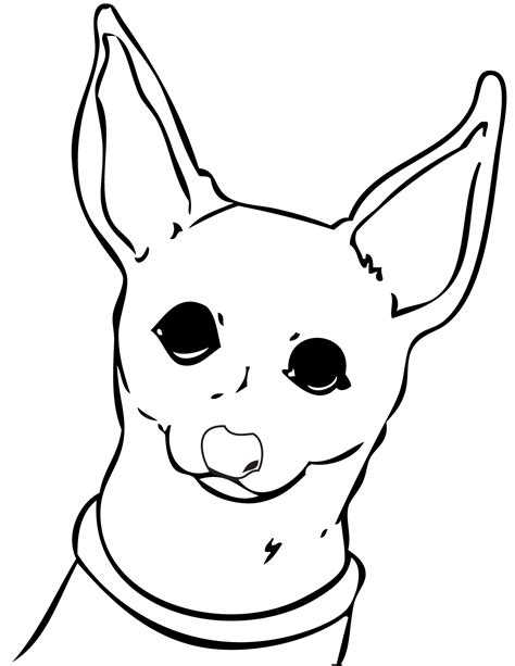 chihuahua dog coloring page dog coloring pages org chihuahua dog coloring pages download and print for free
