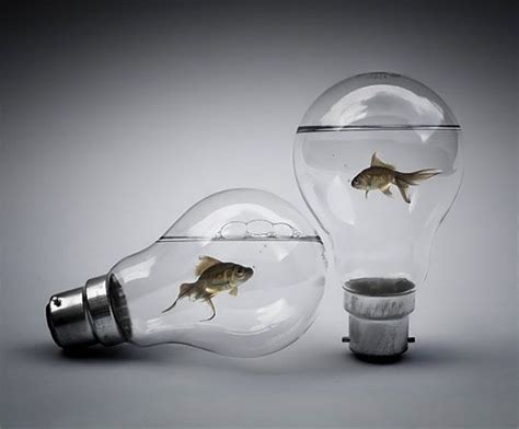 light bulbs that look like water 20 spectacular photo manipulations photo manipulation