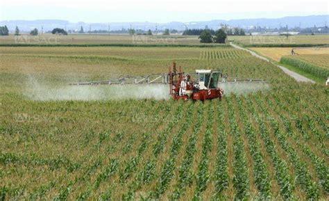 alsace l agriculture victime et responsable