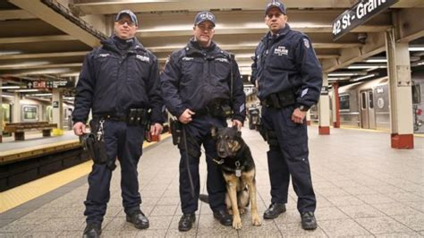 related keywords suggestions for nypd k 9