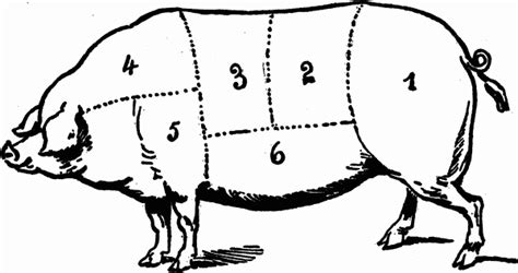 how to butcher a pig diagram cuts of carving for turkey chicken beef