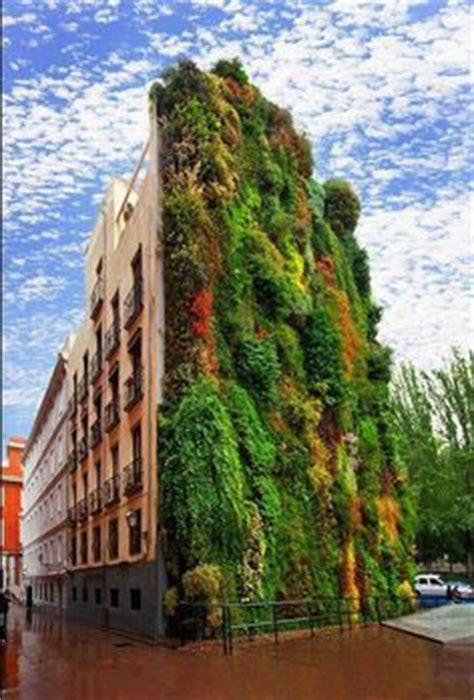Vertical Garden Madrid 1000 Images About Vertical Gardens On