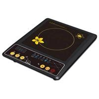 electric induction cooker manufacturers suppliers exporters in india