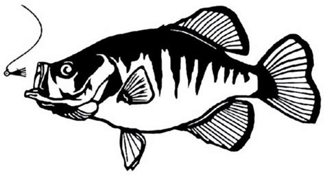 crappie fishing with jig die cut decal car window wall