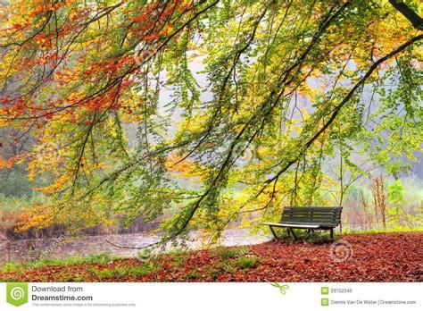 autumn bench royalty  stock image image