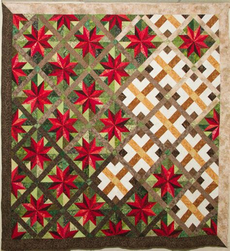 Quilt Pictures by Quilters Guild Serving Douglas County