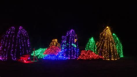 experience the magic of winter walk of lights fairfax