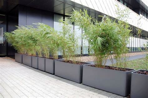 Commercial Planters by Commercial Planters Large Interior Exterior And