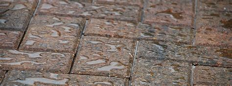 sealing a paver patio paver repair are your pavers sinking