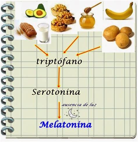 triptofano alimentos melatonina qu 233 alimentos ayudan a producirla el