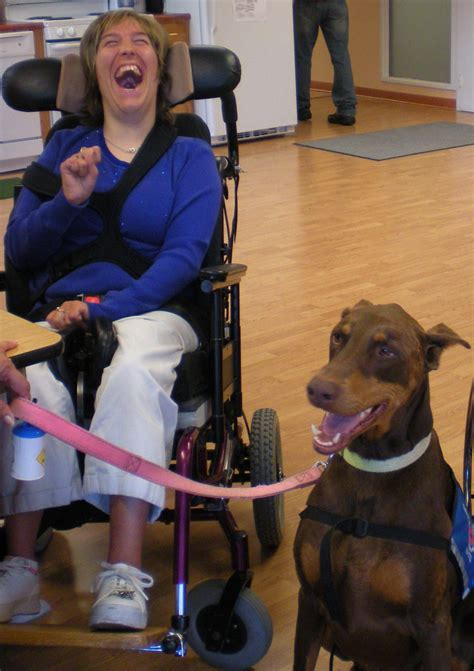 where to your to be a therapy therapy dogs united about us